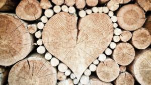 ciocchi di legno a cuore