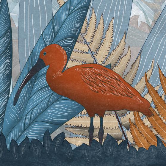 dettaglio della carta da parati per bambini tropicale blu con un ibis