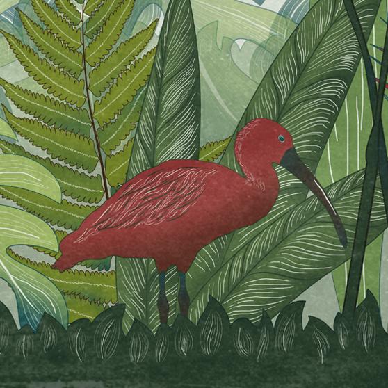 dettaglio della carta da parati per bambini tropicale verde con un ibis